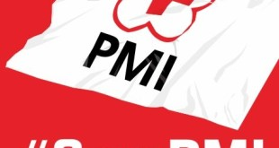Save PMI